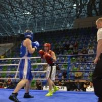 Mistrovstv ČR boxu 2015